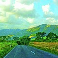 The Road To Te Aroha by Kathy Kelly