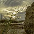 The Rock by Leticia Latocki