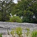 The Rocky Limestone Climb by Ray Shrewsberry