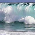 The Rolling Wave by Frank Lee Hawkins Eastern Sierra Gallery