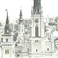 The Roofs Of Novi Sad by Dragoslav Cupic