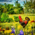 The Rooster's Garden by Sherry Gaston