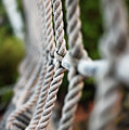 The Rope's by Robert Meanor