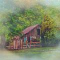 The Rose Barn by Lila Urda