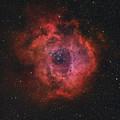 The Rosette Nebula by Rolf Geissinger