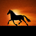 The Running Horse Background by Glend Abdul Art Collections