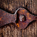The Rusty Hinge by Lisa Russo