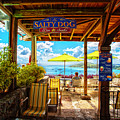 The Salty Dog Cafe St. Thomas by Keith Allen