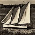 The Schooner Adirondack II Antiqued by Gary Nelson