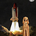 The Scream World Tour Space Shuttle by Eric Kempson