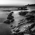 The Sea Serpent by Matteo Viviani