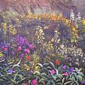 The Secret Garden by Connie Tom