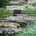 The Secret Garden Of My Soul by Kiki Pinkepank