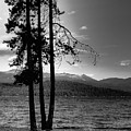 The Selkirk Mountains On Priest Lake by David Patterson