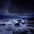 The Sense Of Existence by Jorge Maia