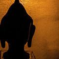 The Serene Buddha  by Girija Shirurkar