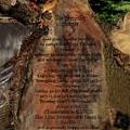 The Serenity Prayer by Heinz G Mielke