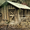 The Shed At Bella Vista by Elaine Teague