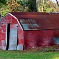 The Shed by Betty Northcutt