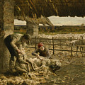 The Sheepshearing by Giovanni Segantini