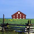 The Sherfy Farm At Gettysburg by John Greim