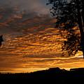 The Shortest Day Sunrise by Arik Baltinester