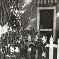 The Side Yard Garden by Jim Furrer