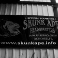 The Skunk Ape by David Lee Thompson