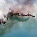The Sky Graffitti by Angel Ciesniarska