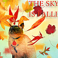 The Sky Is Falling by Theresa Campbell