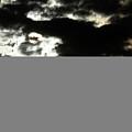 The Sky Speaks by Karol Livote