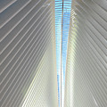 The Skylight Of  The Oculus by Ava Reaves