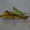 The Sleeping Leaf by Sukalya Chearanantana