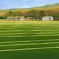 The Sod Farm by Tom Thomas