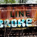 The Soo Broke Line by Diane Young