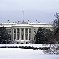 The South View Of The White House by Stacy Gold