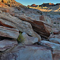The Spotlight Fades At Valley Of Fire by Ray Mathis