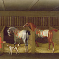 The Stables And Two Famous Running Horses Belonging To His Grace - The Duke Of Bolton by James Seymour