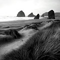 The Stacks Bw by Mike Nellums