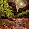 The Start Of Zion Riverside Walk by Blake Richards