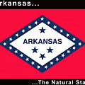 The State Flag Of Arkansas by Floyd Snyder