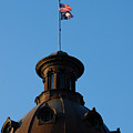 The State Flag Of South Carolina In Columbia Sc by Susanne Van Hulst