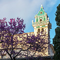 The Steeple Of The Valldemossa Charterhouse In Spring by Kenneth Lempert