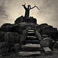 The Stone Steps II Toned by David Gordon