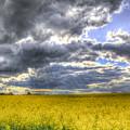 The Storms Approach  by David Pyatt