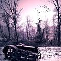The Straggler...thurston Hollow Pa. by Arthur Miller