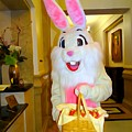 The St.regis Easter Bunny by Ed Weidman