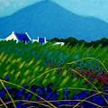 The Sugar Loaf County Wicklow Ireland by John  Nolan
