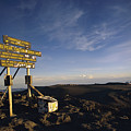 The Summit Of Mt. Kilimanjaro, Africas by Bobby Model