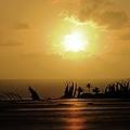 The Sun Rises by Jenny Regan